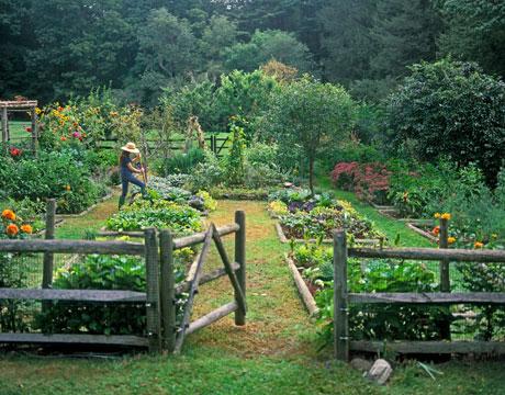 garden-1-0809-de